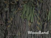 Jackal-Ghillies-woodland