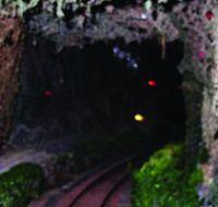 Crazy-Camo-Ghost-Train
